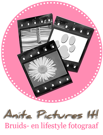 Anita Pictures It! | Bruidsfotografie